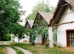 Šokac houses in Draž