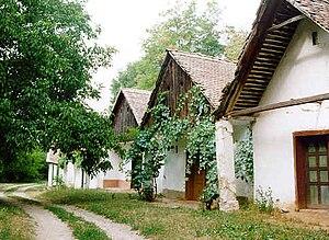 Draž - Šokac houses in Draž
