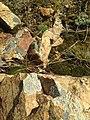Камни на вершине сопки.jpg