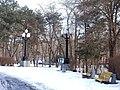 Острівна частина парку імені Шевченка.JPG