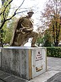 Пам'ятник солдату на братській могилі радянських воїнів. Велика Новосілка, Донецька обл.jpg