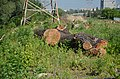 Природне русло р. Либідь, вул. Саперно-Слобідська, вирублені дерева.jpg