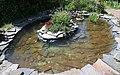 Сирецький дендропарк Золоті рибки IMG 7738 stitch.jpg