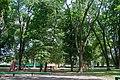 Смт Летичів, міський парк відпочинку.jpg