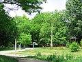 Солнечный. 4 июня 2013г. - panoramio (41).jpg