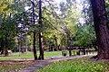 Старый парк - panoramio (1).jpg