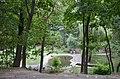 Територія ботанічного саду імені Фоміна.jpg