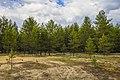 Экологическая тропа. Якша MG 8846.jpg