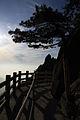 中国黄山10.jpg