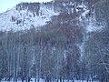 冬季小东沟的桦林 余华峰 - panoramio.jpg