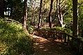 多摩川台公園 - panoramio (13).jpg