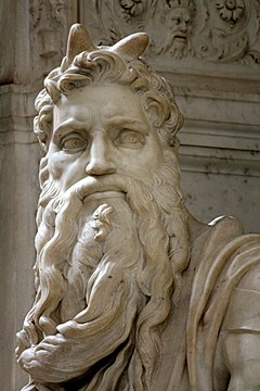 Image result for michelangelo moses face