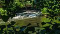 -7 Naturschutzgebiete und Nationalpark Eifel NRW,Rurmäander zwischen Floßdorf und Broich.jpg