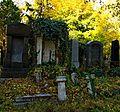 005 - Wien Zentralfriedhof 2015 (22936726620).jpg