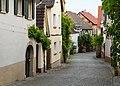 014 2015 06 16 Kulturdenkmaeler Forst.jpg