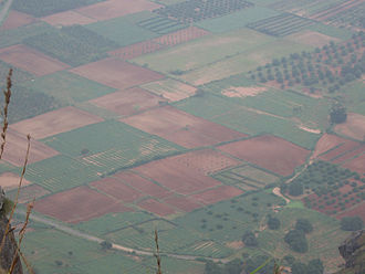 Sangam landscape - Pictorial representation for geographical thinais named Marutham, which relates to that of a characteristic feature of areas surrounding in and around Cropland's (or Fields) by classical poetry in Tamil language