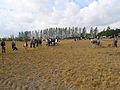 04-09-12-fahrenwalde-schaupfluegen-by-RalfR-32.jpg