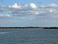 1109 Zatoka na Palach.jpg