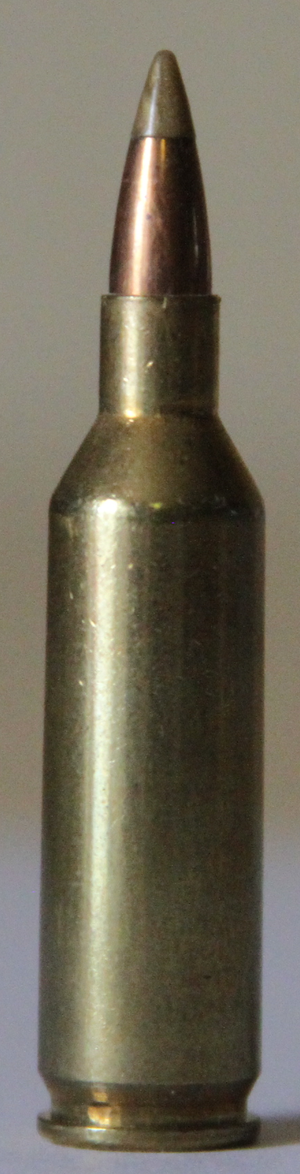 .17 Remington Fireball - Image: 17remfireball