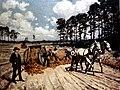 1889SAND-CLAY ROADS (16401882261).jpg