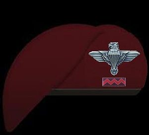 18 Light Regiment - Image: 18 Light Beret Smaller Balki Beret Trimmed