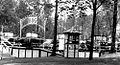 1925 Central Park The Bug.jpg