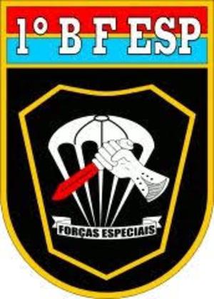 1º Batalhão de Forças Especiais - Coat of arms of the 1st SF Battalion