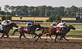 2010 Belmont Stakes finish.jpg