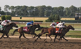 2010 Belmont Stakes - Image: 2010 Belmont Stakes finish
