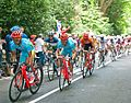 2012 Cycling Men road race - Vino.jpg