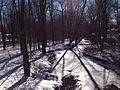 2014-01-24 12 00 00 View south along the West Branch Shabakunk Creek from the Rutledge Avenue Footbridge.JPG