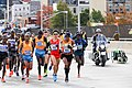 2014 New York City Marathon IMG 1671 (15077108164).jpg