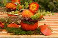 2015-10-17 11-11-36 marche-plantes-belfort.jpg