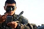 2015.9.16. 해병대 2사단-한미 해병 합동훈련 - 16th Sep. 2015. ROK 2nd Marine Division - ROKMC & USMC joint trainning (22134660142).jpg