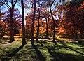 2017 Fall Thompson Park Scarborough ON.jpg