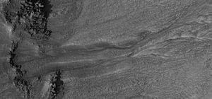 Acidalia Planitia - A gully found in the Bamberg Crater, which resides in Acidalia Planitia