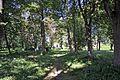 26-212-5002 Mariampil Arboretum RB.jpg