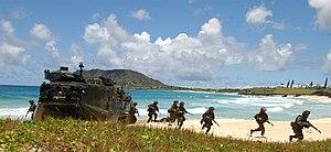 U.S. Marines disembark Amphibious Assault Vehi...