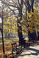 7368 Planty krakowskie. Foto Barbara Maliszewska.jpg