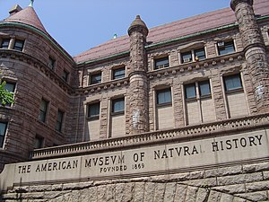 Richardsonian Romanesque - Architectural details of the American Museum of Natural History