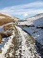 A farm track in Unthank Hope - geograph.org.uk - 736329.jpg