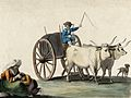 A man driving a cart pulled by two oxen; in the left foregro Wellcome V0019963.jpg