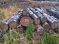 A red log - geograph.org.uk - 630446.jpg