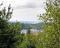 Acadia Carriage Path View, overgrown.JPG