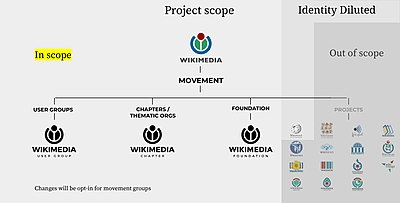 Actual Project scope of 2030 Movement Brand Project.jpg