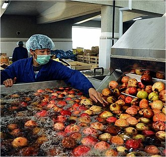 Pomegranate production in Afghanistan - Afghan pomegranates being washed at Badam Bagh (Almond Farm) in Kabul