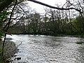 Afon Gwy - River Wye - geograph.org.uk - 1282418.jpg