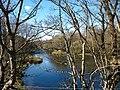 Afon Rhythallt - geograph.org.uk - 223784.jpg