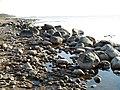 Akmeņainā jūrmala Oltužu apkārtnē 2000-10-07 - panoramio.jpg