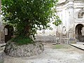 Albero chiesa Monterano marchese del grillo.JPG